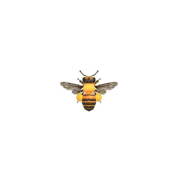 Animal Crossing abeille naine